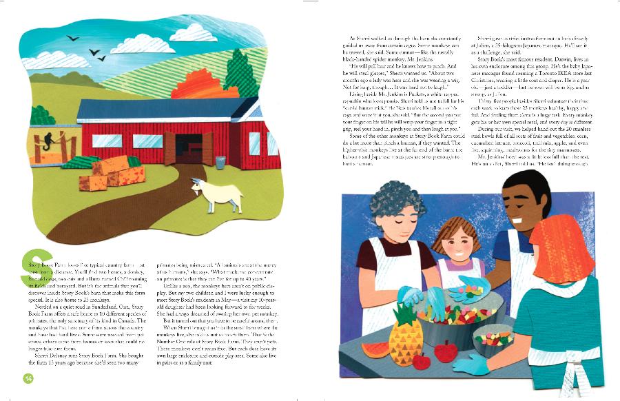 storybook-pg2